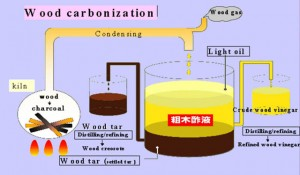 Wood Carbonization